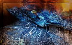 Toi qui dors sous la terre, Te souviens-tu de ma maison aux balcons Où la lumière de juin étranglait des fleurs dans ta bouche.Et un matin tout prenait feu Un matin des brasiers Sortirent de terre Dévorant les hommes...
