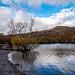 Lake Padarn21