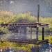Morning fog gathering under a dock