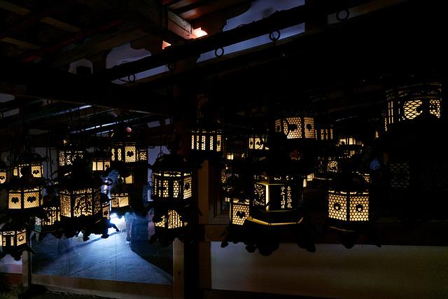 Sanctuaire Kasuga-taisha (春日大社) (12)