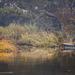 blindbrook-bluerowboat