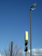Yellow sign with bird