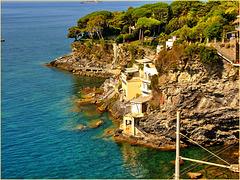 Il mare di Pieve Ligure - (640)