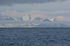 Svalbard, Flying above Van Mijenfjorden