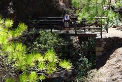 HFF - Wanderung durch die Cumbrecita