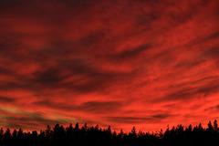 Clear Lake Sunset