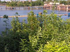 An der Kieler Schleuse am Nord-Ostseekanal