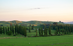 Neuseeland - Otorohanga