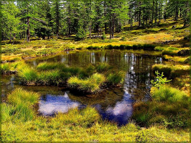 Il lago della capra (363)