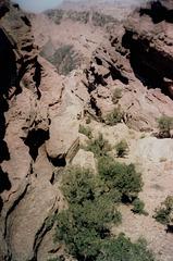 A view to Wadi Mousa.