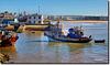 Ils sont arrivés au port - Essaouira - Maroc