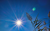 1 (13a)..austria sun and natur