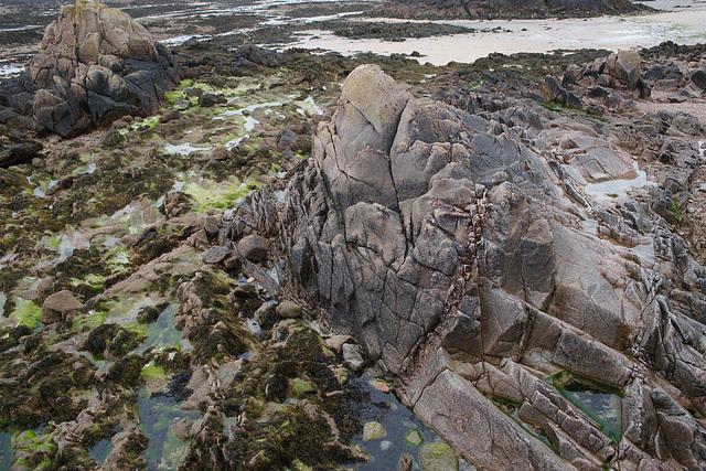 La Rocque At Low Tide