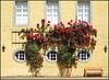 Schloss Dyck, Jüchen 041