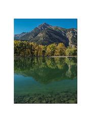 Pointe fine se mire dans le lac.