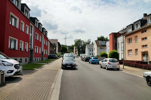 Weidenstraße (Essen-Gerschede) / 9.06.2019