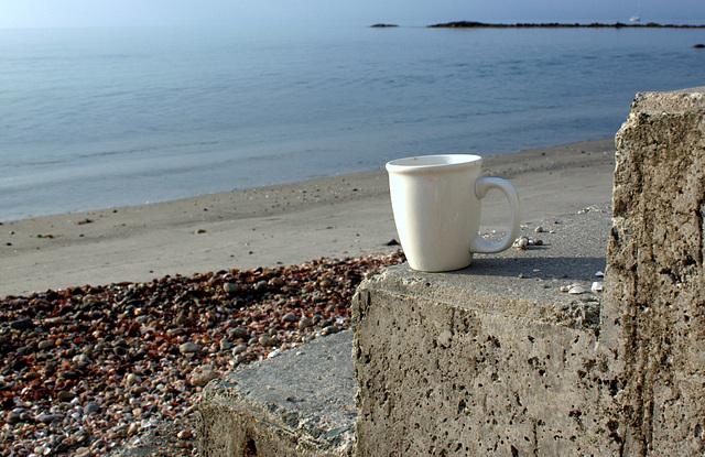 Cup, Niantic