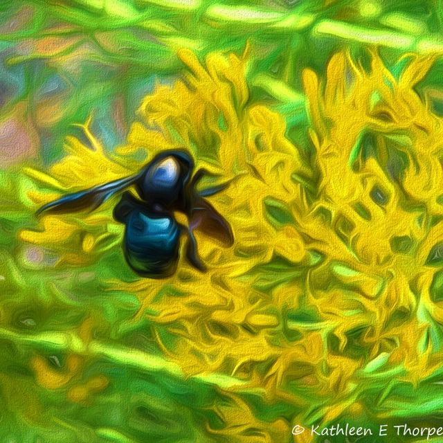 Bumble Bee Tusayan Ruins Grand Canyon - Topaz Impressionistic Swirly Strokes III
