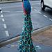 An ornamental peacock jumper.