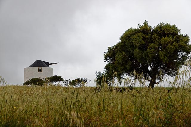 Lexim, Portugal