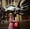 Triceratops - Natural History Museum, London - 1982