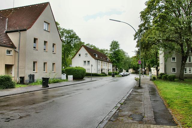 Nienkampstraße (Gelsenkirchen-Scholven) / 5.05.2019