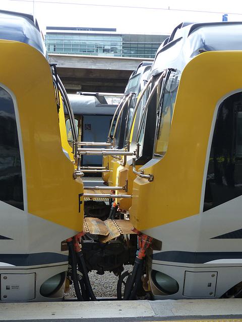 Metlink EMUs at Wellington (10) - 27 February 2015