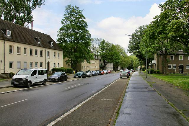 Feldhauser Straße (Gelsenkirchen-Scholven) / 5.05.2019