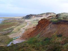 Morsum Kliff, Sylt