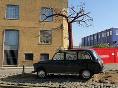 Black Cab Tree
