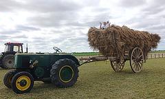 Fête des moissons/Harvest festival, Manchecourt