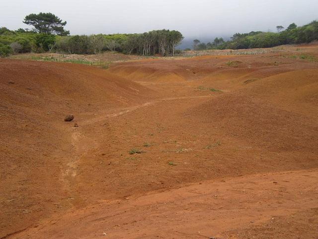 Clayey ground.