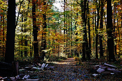 Herbstwanderung - Autumn hike