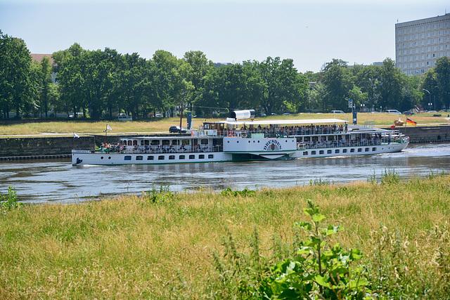 Dresden 2019 – Steamship Dresden