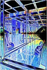 blue in vitrine
