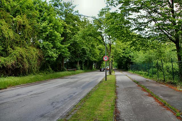 Bellendorfsweg (Gelsenkirchen-Scholven) / 5.05.2019