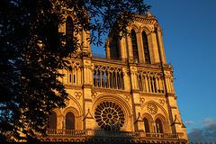 Après le sinistre de la Nantes religieuse , une photo de Notre-Dame de Paris réalisée la semaine dernière .