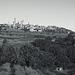 Tuscany 2015 San Gimignano 21 XPro1 mono