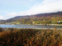 Herbststimmung am Bielersee