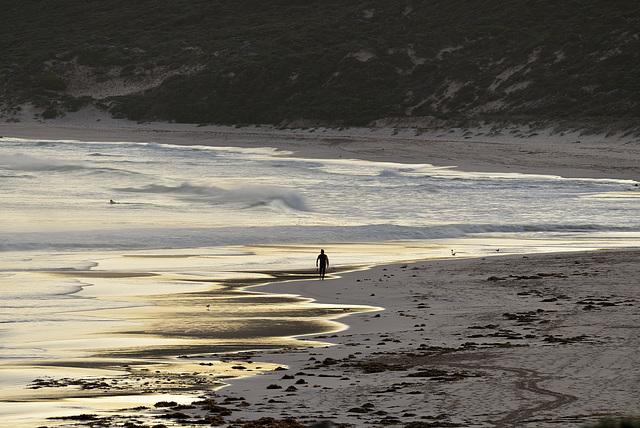 Eager Surfer