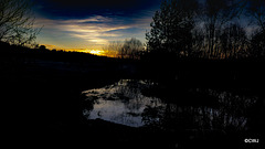 The darkness deepens - last sunset of 2019, over the pond.