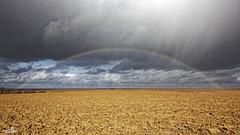Signe de pluie