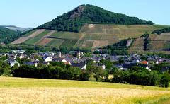 Wanderung rund um Heimersheim