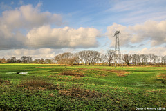 Groninger Landschap,the Netherlands