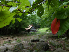 Wohnhaus von Noah