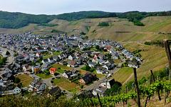 DE - Dernau - Blick aus den Weinbergen