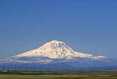 Mount Adams from State Route 97