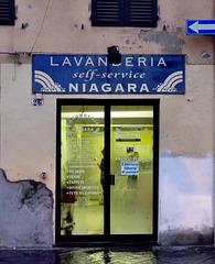 Lucca - Niagara