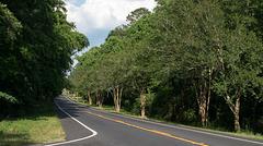 Florida US 90 (#0585)