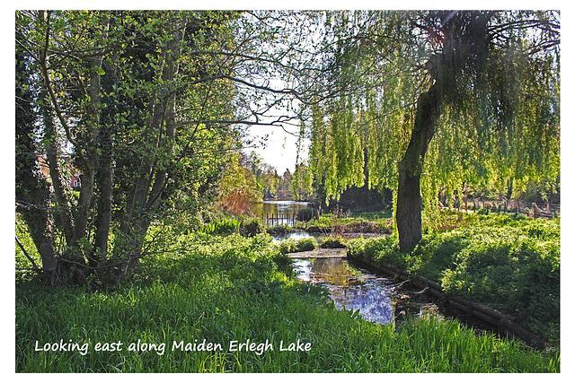 Looking east - Maiden Erlegh Lake - Reading - 22.4.2015